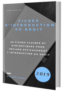 Couverture 3D - Fiches d'introduction au droit
