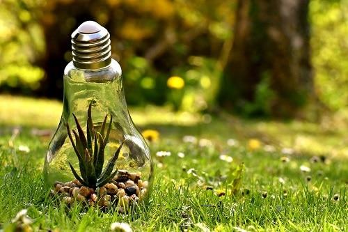 contentieux de la protection de l'environnement