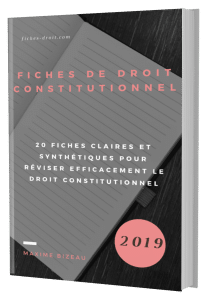 Couverture 3D - Fiches de droit constitutionnel