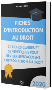 Couverture 2020 3D - Fiches d'introduction au droit